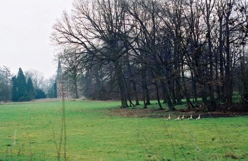 Het kasteelpark van Brustem