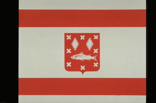 Brasschaat Vlag