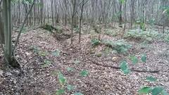 Loopgraven in kasteeldomein Groenendaal