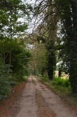 Parkje van de villa Sint-Jansberg
