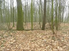 Mijnkraters 25/9/1915 'Sanctuary Wood'