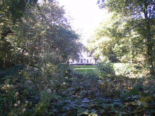 Evergem Wippelgem kasteelpark bosdreven (10)