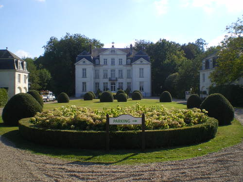 Evergem Wippelgem kasteelpark voorplein met topiary van hulst en randpalm (1)