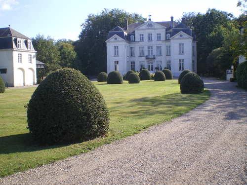 Evergem Wippelgem kasteelpark voorplein met topiary van hulst en randpalm (2)