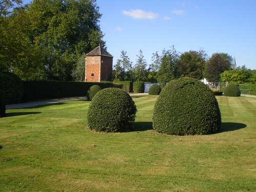 Evergem Wippelgem kasteelpark voorplein met topiary van hulst en randpalm (3)