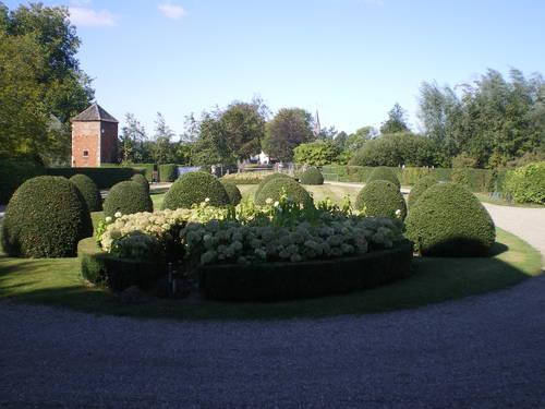 Evergem Wippelgem kasteelpark voorplein met topiary van hulst en randpalm (4)