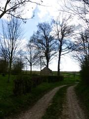 Voeren 's-Gravenvoeren Holle weg naar Oude Linde (1) (https://id.erfgoed.net/afbeeldingen/257669)