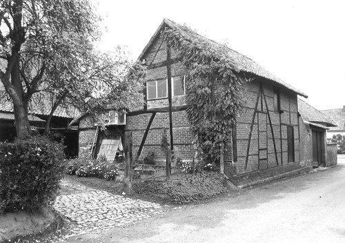Sint-Truiden Zpperen-Dorp 77