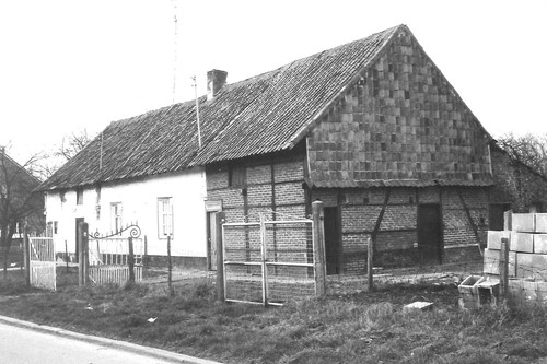 Sint-Truiden Runkelen-Dorp 51