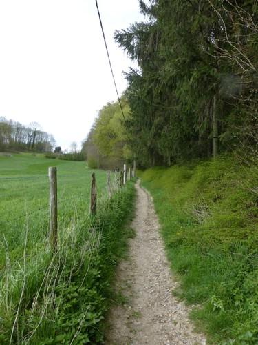 Voeren Sint-Martens-Voeren Onverharde weg Komberg (2)