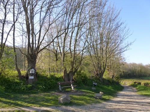 Voeren Sint-Martens-Voeren Weg naar Ulvend (1)