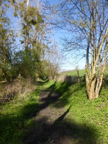 Voeren Sint-Martens-Voeren Voetweg naar Krindaal (3)