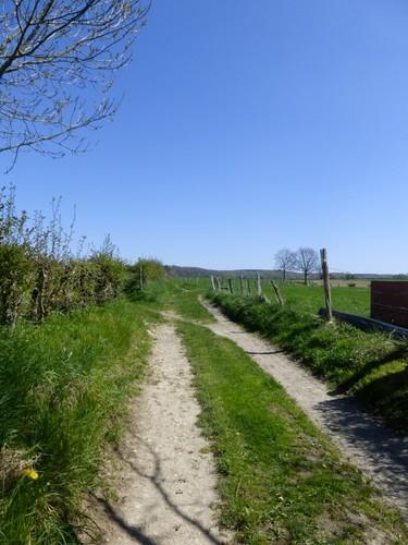 Voeren Sint-Martens-Voeren Doorsteekweg naar Krutsberg (4)