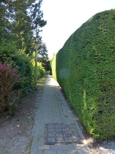 Sint-Truiden Gorsem Kerkwegel (5)