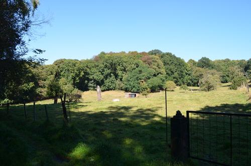 Zicht over het Groot Park van Bunswijck.
