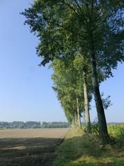 Tussenweg Beverhoutsveld