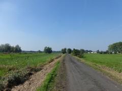 Trambedding lijn Ver-Assebroek - Oedelem