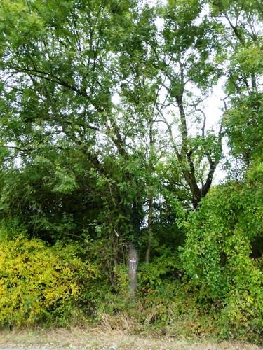 Voeren Teuven Gieveldstraat hakhoutstoof met boomkruis
