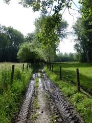 Voetweg over Kruisberg
