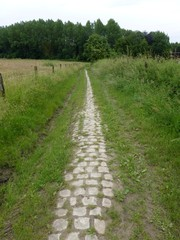Weg naar Nieuwermolenbeek