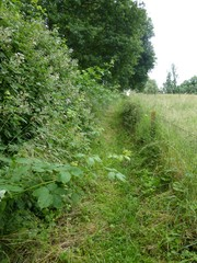 Doorsteekweg naar Terlinden