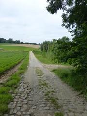 Voetweg Petrus Ascanus