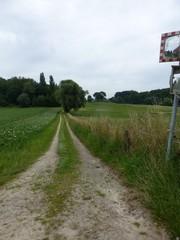 Voetweg naar Vrijthof