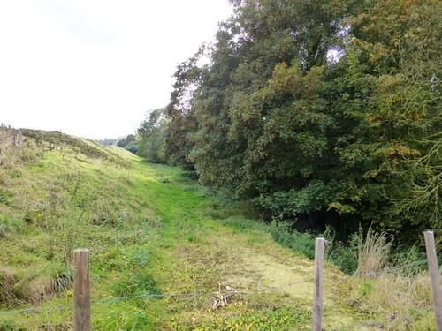 Spaarvijvers watermolen van Obsinnich en Remersdaalbeek met houtkanten