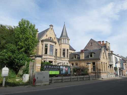 Ninove Dreefstraat 21