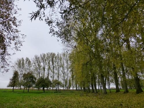 Ninove Nederhasselt Voetweg Lourdeskapel (7)
