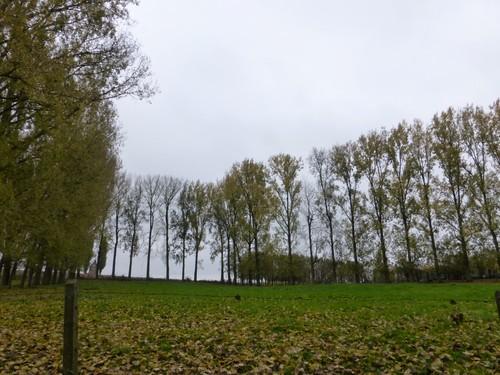 Ninove Nederhasselt Voetweg Lourdeskapel (5)
