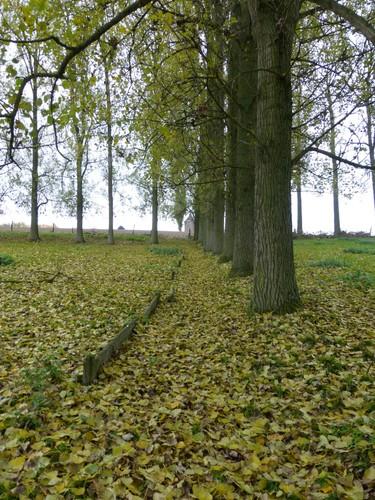 Ninove Nederhasselt Voetweg Lourdeskapel (4)