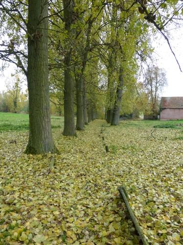 Ninove Nederhasselt Voetweg Lourdeskapel (2)