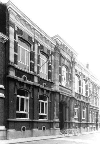 Boom Tuyaertsstraat 53