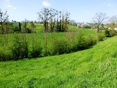 's Gravenvoeren grasland met microreliëf (https://id.erfgoed.net/afbeeldingen/265125)