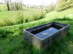 's Gravenvoeren grasland met microreliëf en drinkbak (https://id.erfgoed.net/afbeeldingen/265126)