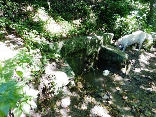 Bron en kalktufafzettingen