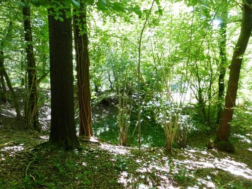 Sint-Martens-Voeren silexgroeve in Broekbos