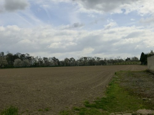 Zicht op de boomgaard van het kasteeldomein van Brustem.