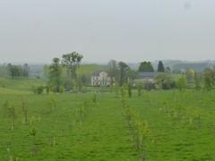Bellevuebos en kastelen van Gors-Opleeuw