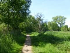 Dijkweg bij Blaasveldbroek