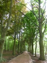 Parallelweg naar Klein Broek