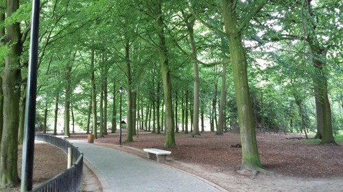 Antwerpen_Deurne_Turnhoutsebaan_znr_Rivierenhof_verharde dreef rond spiegelvijver