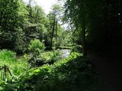 Anzegem Tiegemberg zonder nummer Vijvers in het Sint-arnolduspark (https://id.erfgoed.net/afbeeldingen/268260)