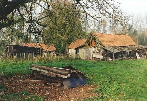 Laakdal Steenbergenveld 8