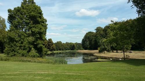 Vossemvijver in het Warandepark van Tervuren