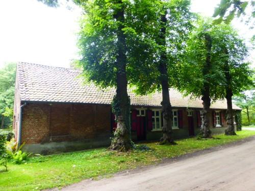 Vier lindebomen voor woning, Turnhout, Turnhout