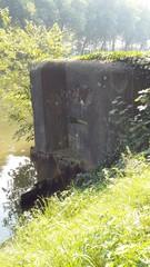 Bocholt Kanaal Bocholt-Herentals: Oeverbunker 21, oreillon met daarnaast het mitrailleurschietgat in de zijwand (https://id.erfgoed.net/afbeeldingen/274266)