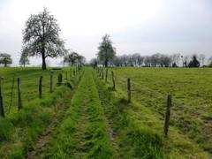 's-Gravenvoeren Heuvelke hoogstamboomgaarden (https://id.erfgoed.net/afbeeldingen/274843)