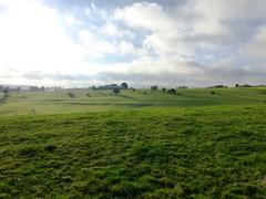 Voeren Mostert graslanden rond Kloosterhof (https://id.erfgoed.net/afbeeldingen/275149)